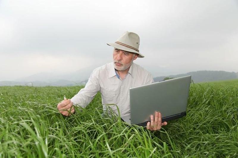 中国农业未来发展主力军,究竟是生态农业还是有机农业?