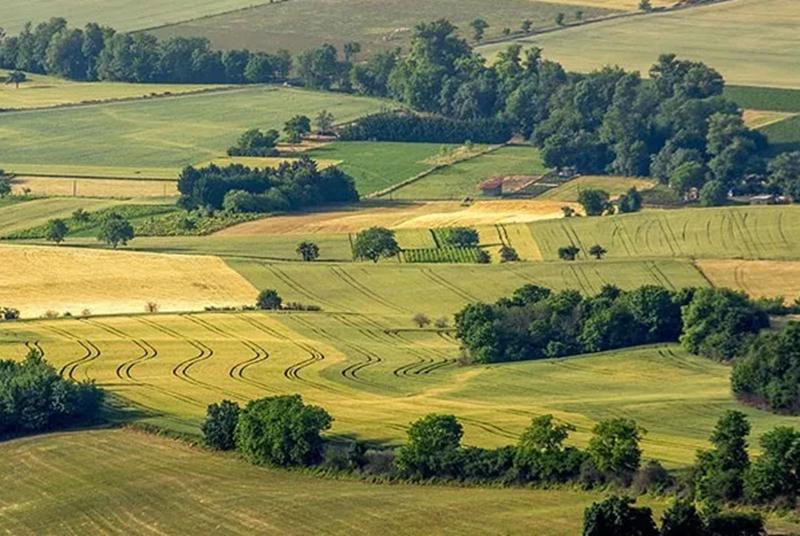法国生态农业强在哪?对我国农业发展有什么启示?