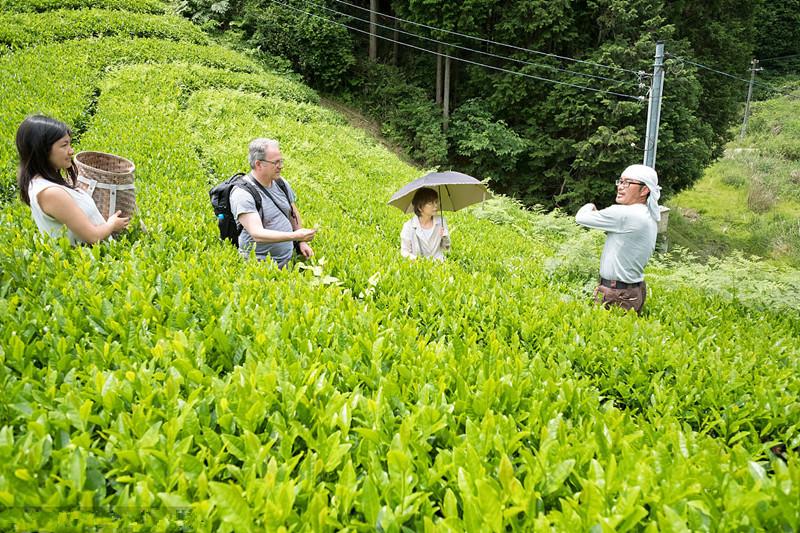 中国有机农业如何破局?看完国外有机农业的做法就知道了!