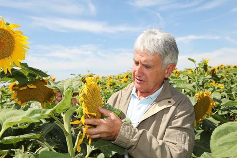 发展有机农业,不只是为了有钱人的健康