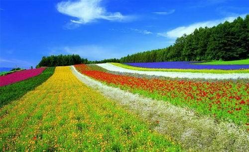 创业小黑板|未来30的农业创富金矿:生态农业