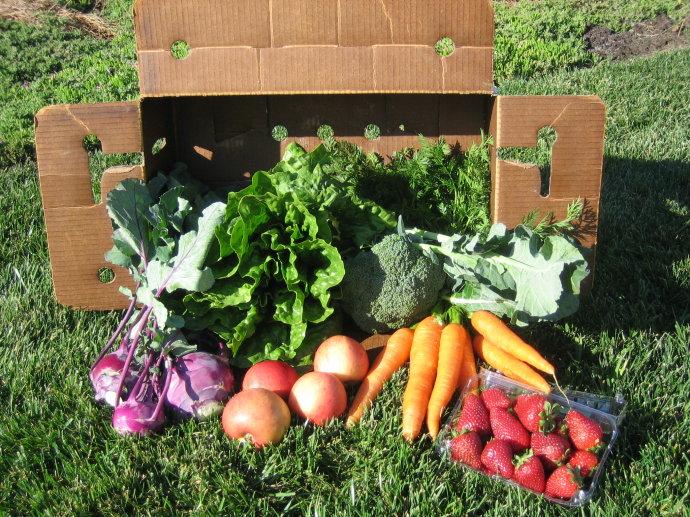 创业小黑板|新型农业发展模式:社区支持农业(CSA)