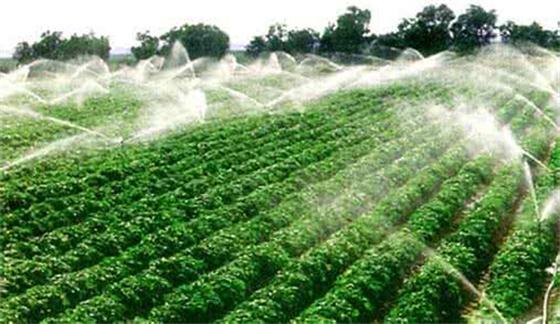 创业小黑板|低碳农业:未来农业必经之路