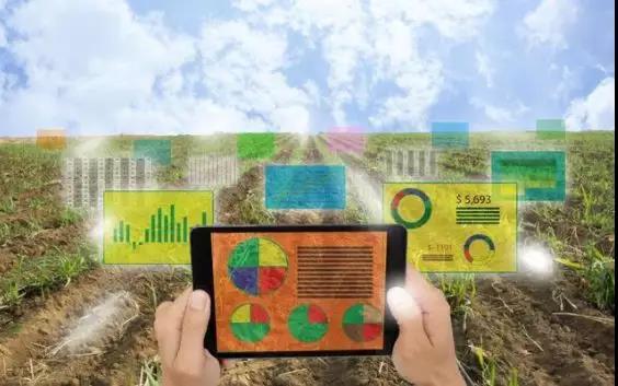 三农日报|马云:未来要培育创业农民和产业农民;人大教授:有机农业乱象原因有3个