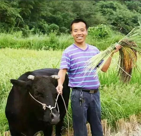 他辞官,返乡搞有机农业,仅乡村旅游年营收150万!