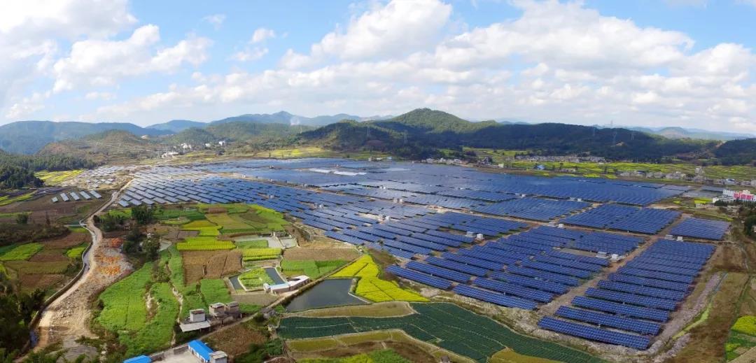 三农日报|有机农业生产面积将年增长20%-30%;日本企业加大对越南农业投资