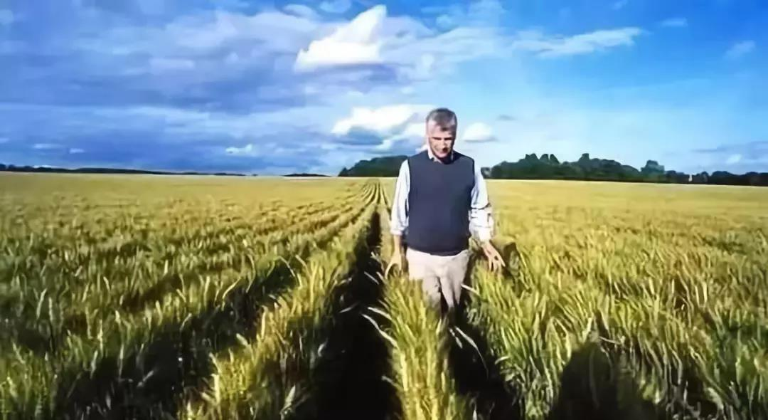 三农日报|丹麦农业:限制施肥与轮作周期;中国有机质含量与日本相差50年