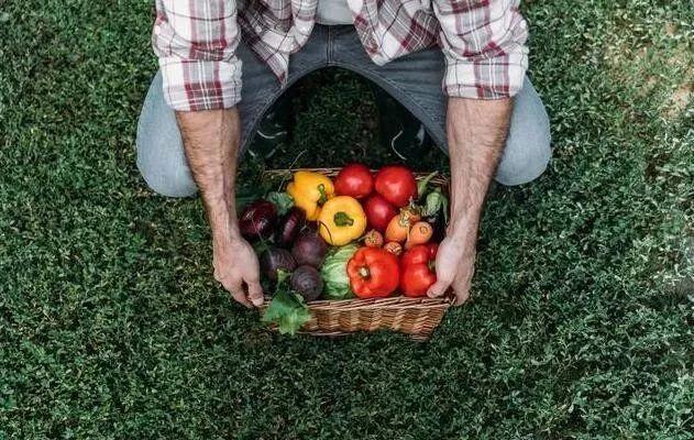 有机农业不是一门好生意,未来还得靠产业,否则没戏