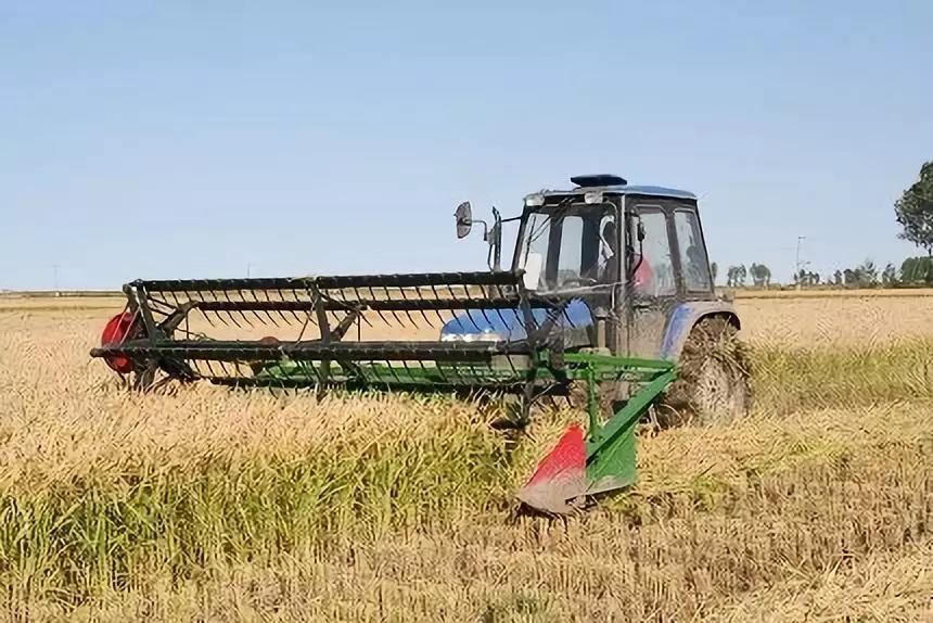 三农日报|有机农业产业的3大经营模式;农村电商新模式:农产品直播