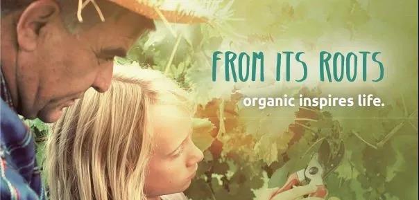 【行业报告】2020年全球有机农业发展报告