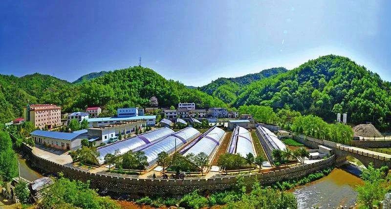 三农日报|外媒:中国正成为有机农业的领导者;报告:休闲农业同质化严重