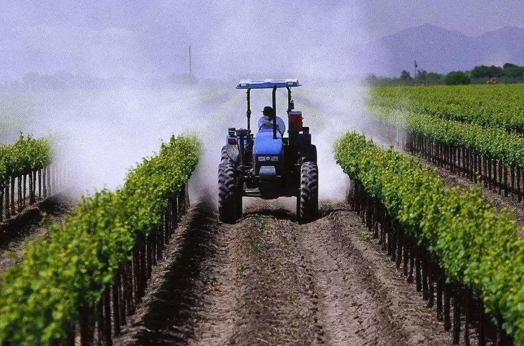 """【新看板】农业为国之根本,未来农业发展""""小趋势""""都在这里了"""