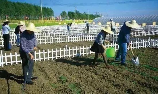 【大佬解读】有机农业,大势所趋,人心所向!