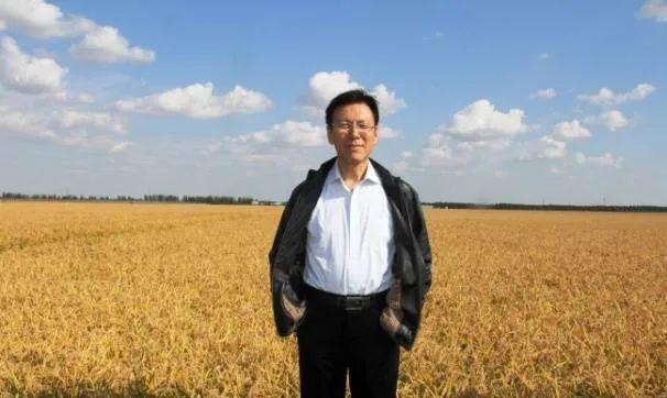 【大佬解读】柯炳生:如何看待有机农业的发展?