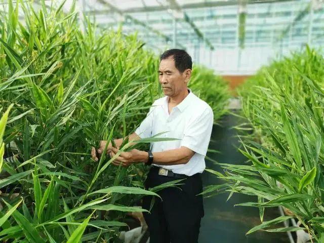 三农日报|农业农村部:加大农作物、畜禽良种攻关;90%有机农场处于亏损状态