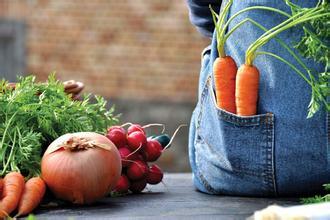 让有机农业做不下去的5大原因