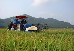 有机农业,是一件昂贵而不靠谱的事情吗?