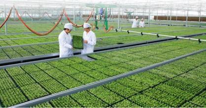 农业前沿 | 中国有机农业前景有多大?看看美国的数据就知道
