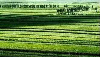 各国生态农业怎么搞?我们可以取取经