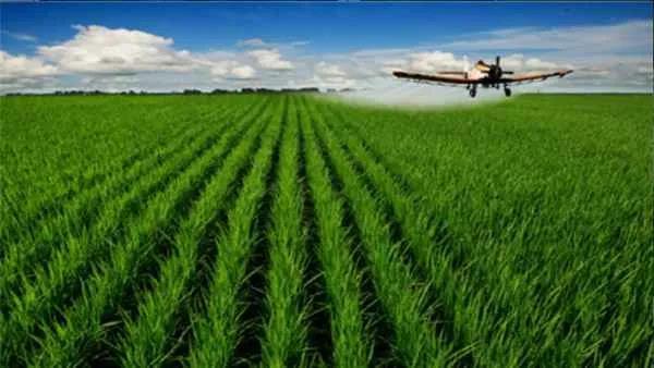 【深度分析】农业创业,炮灰中的炮灰,中毒的都是这8种!