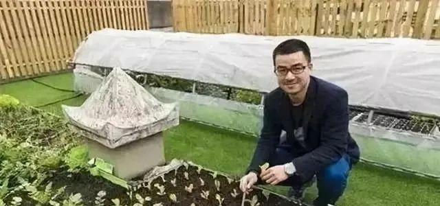 【案例】90后山东农民1.2万起步创业,如今靠直播种菜年入70万