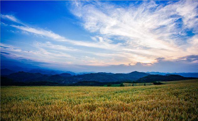 【深度剖析】给农业从业者的一些提醒和启示!